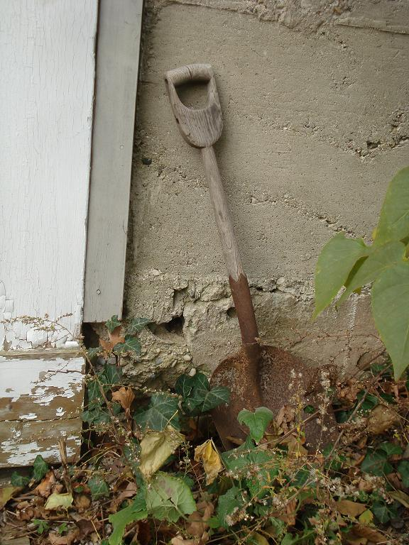 Shovel by barn